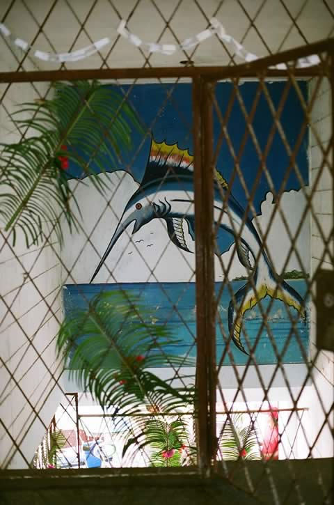 Cuba 5 | Foto: Benedetta Großrubatscher