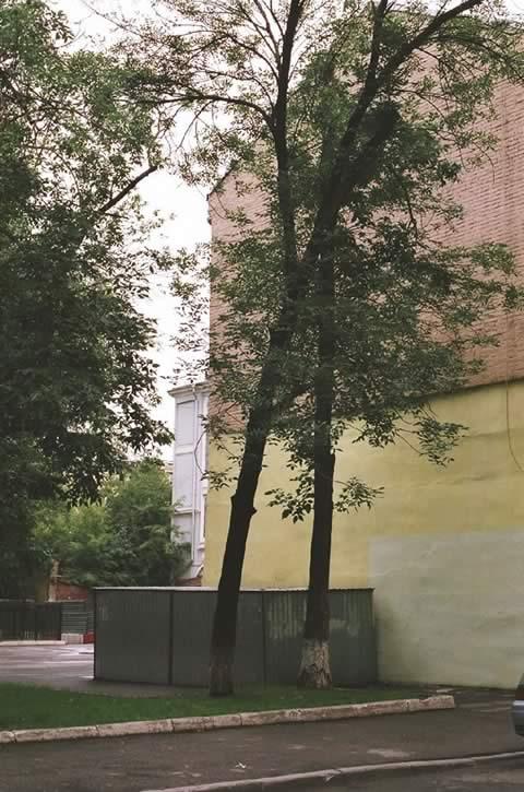 Moskow 14 | Foto: Benedetta Großrubatscher